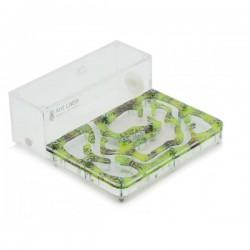 """Комплект муравьиной фермы с муравьями AntLabs Start """"Зеленый"""""""