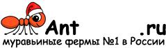 Муравьиные фермы AntFarms.ru - Орел